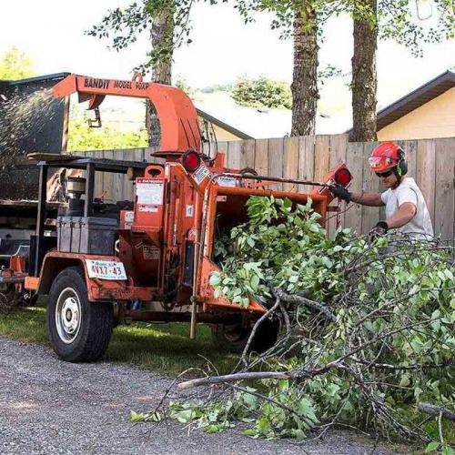Wood Chipping - Prairie Woodlands Tree Care LTD.