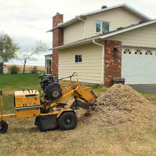 Stump Grinding - Prairie Woodlands Tree Care LTD.