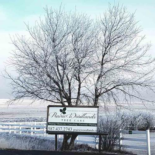 Winter Sign - Prairie Woodlands Tree Care LTD.